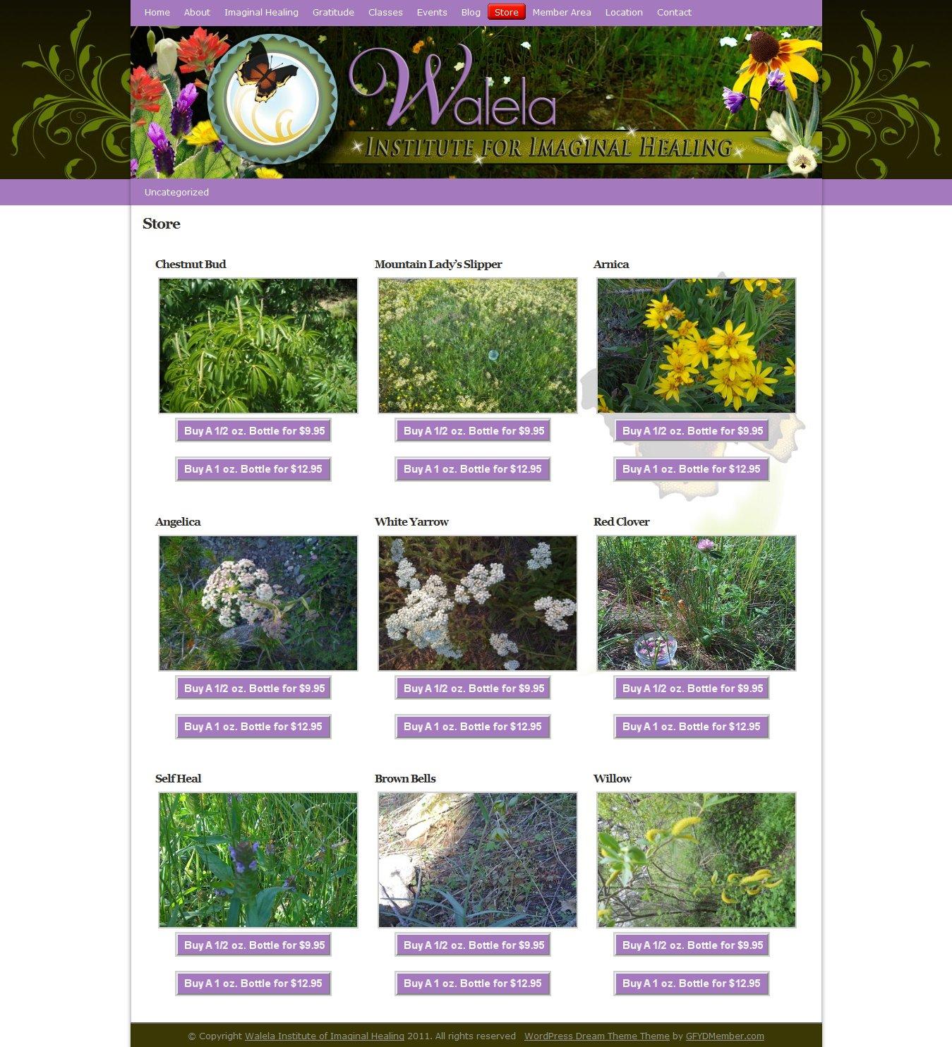Walela Healing Institute – Website Design