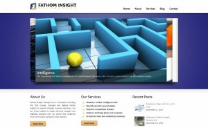 Fathom Insight Management – Website Development